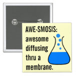 Biology & Chemistry: Teaching Science is Awesome 2 Inch Square Button