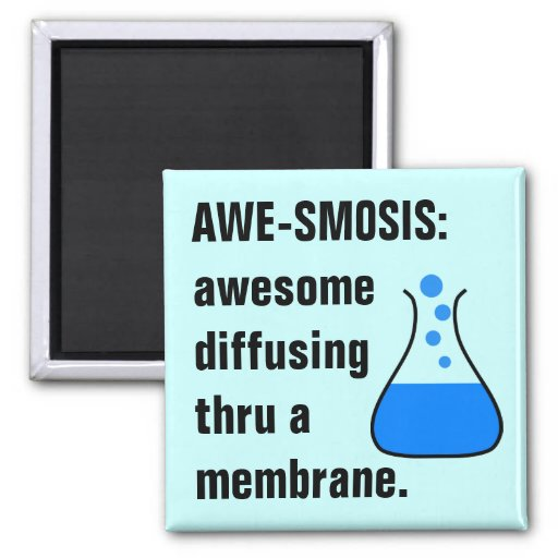 Biology & Chemistry: Teaching Science is Awesome 2 Inch Square Magnet