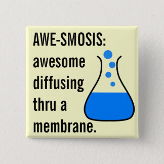 Biology & Chemistry: Teaching Science is Awesome Pinback Button