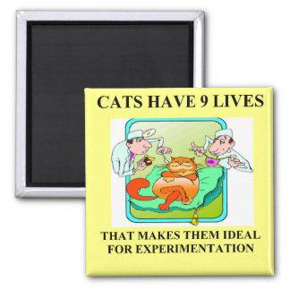 biology experiment joke 2 inch square magnet
