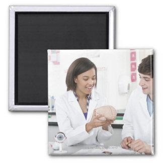 Biology lesson. 3 magnet