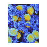 biology microbiology abstract art poster or canvas