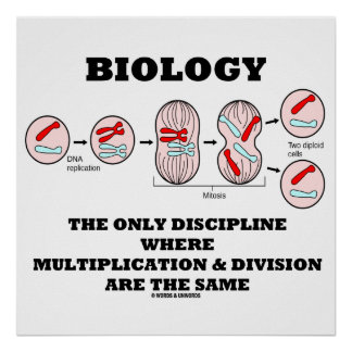 Biology Only Discipline Multiplication Division Poster