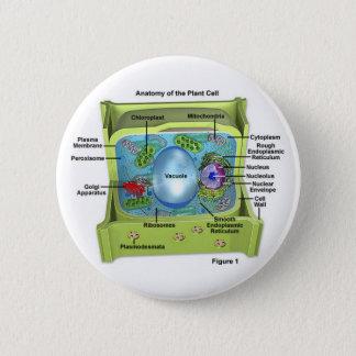 Biology Pinback Button