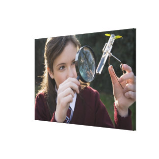 Biology student studying plant canvas print