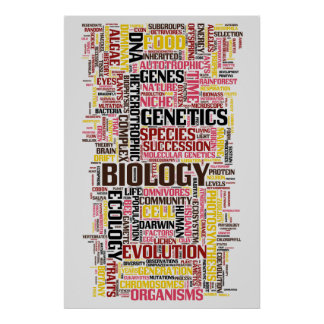 Biology Wordle No. 11 Poster