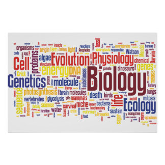 Biology Wordle Poster No.4