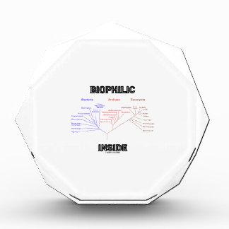 Biophilic Inside (Phylogenetic Tree Of Life) Awards