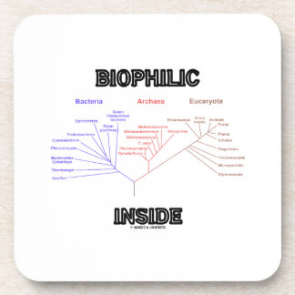 Biophilic Inside (Phylogenetic Tree Of Life) Beverage Coaster