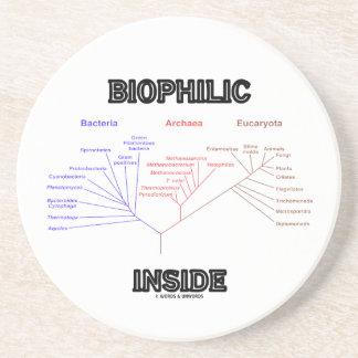 Biophilic Inside Phylogenetic Tree Of Life Drink Coaster