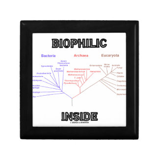 Biophilic Inside Phylogenetic Tree Of Life Gift Box