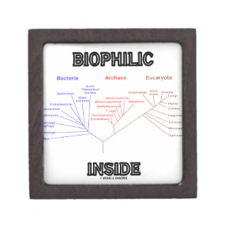 Biophilic Inside (Phylogenetic Tree Of Life) Premium Keepsake Boxes