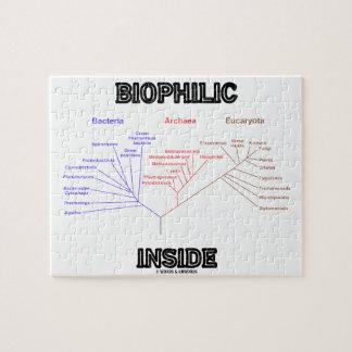 Biophilic Inside Phylogenetic Tree Of Life Puzzle
