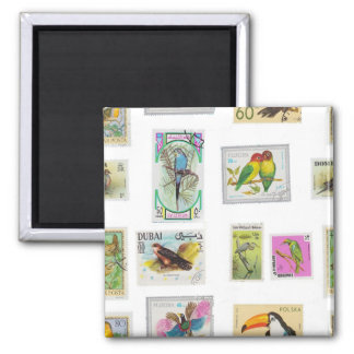 Biord Stamps 2 Inch Square Magnet