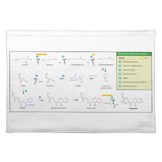 Biosynthesis of Scopolamine in Plants Placemat