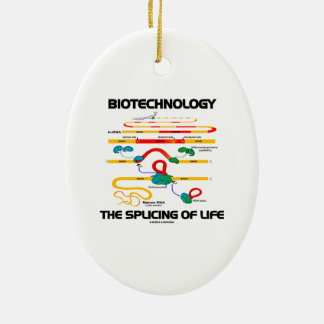 Biotechnology The Splicing Of Life (Mature RNA) Double-Sided Oval Ceramic Christmas Ornament