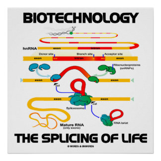 Biotechnology The Splicing Of Life (Mature RNA) Poster