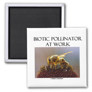 Biotic Pollinator At Work (Bee On A Flower) 2 Inch Square Magnet