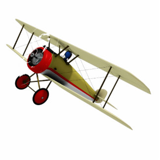 Biplane and Pilot Photo Sculpture