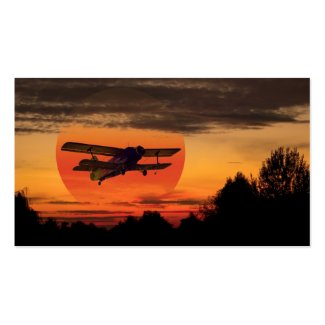biplane business card