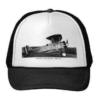 BIPLANE HAT