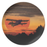 biplane party plates