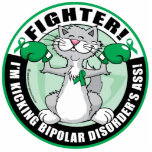 Bipolar Disorder Cat Fighter Cut Out