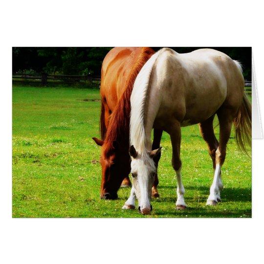 Biracial Horse Couple Card