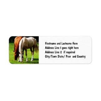 Biracial Horse Couple Label