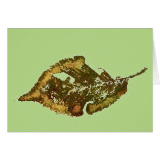 """Birch #2 Green"" Country Greeting Card"