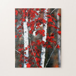 Birch #2 puzzle