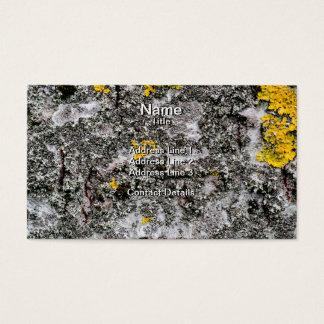 Birch and Lichen Business Card