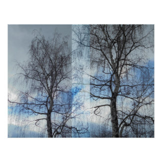 Birch. Approximation Poster