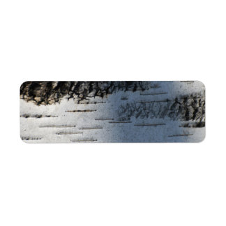 Birch bark 1291 label