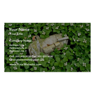 Birch bark and bunchberry flowers White flowers Business Card