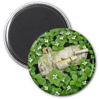 Birch bark and bunchberry flowers White flowers Magnet