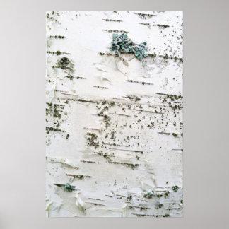 Birch bark poster