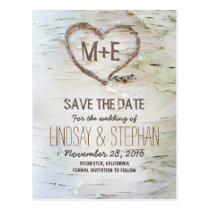 Birch Bark Rustic Save The Date Postcards at Zazzle