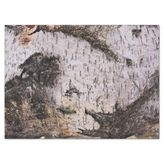 "Birch Bark - wood texture nature photo 17"" X 23"" Tissue Paper"