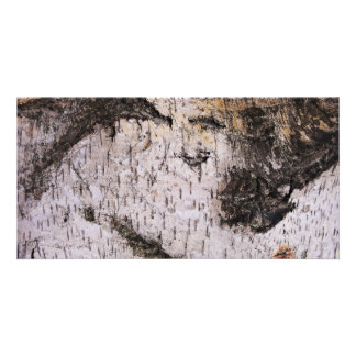 Birch Bark - wood texture nature photo Card