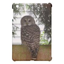 Birch Bay Owl Case For The iPad Mini