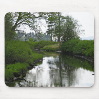 Birch Bay State Park Mouse Pad