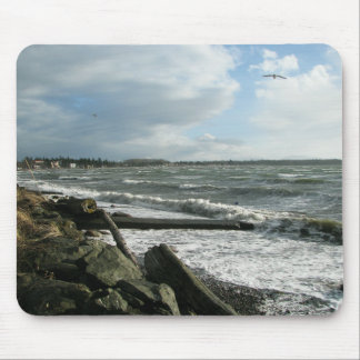 Birch Bay Wind Storm Mouse Pad