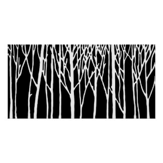 Birch Forest by Leslie Peppers Poster