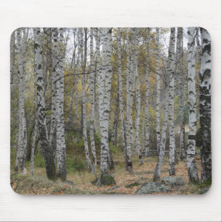 Birch Forrest Photo on Mousepad