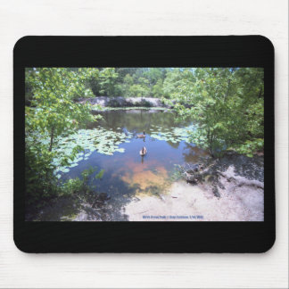 Birch Grove Park - Take a Gander at These Geese ! Mouse Pad