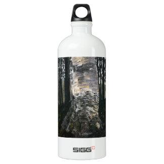 Birch in a Forest Aluminum Water Bottle