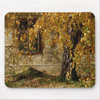 Birch In Autumn Mouse Pad