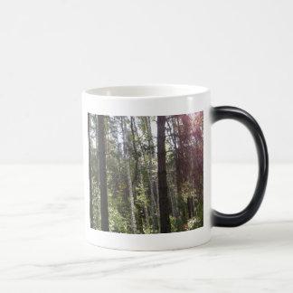 Birch Magic Mug