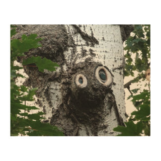 Birch Soul Tree Magic Face Photography Wall Art